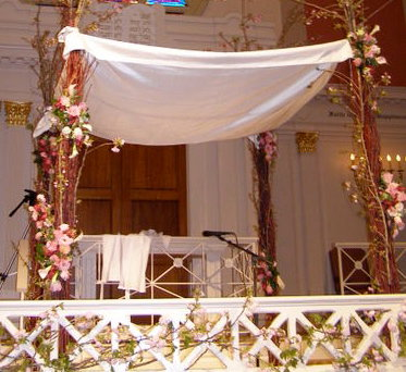 Getting Zion Ready for a Wedding